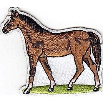 HORSE Iron On Patch Animals Western Horseback Equestrian