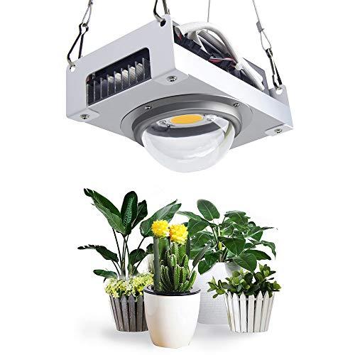 CFGROW COB Cree CXB3590 LED Grow Light, Full Spectrum 100W Plant Growing Light Bulb, 3500K Blanco con diseño de Lente óptica para Plantas de Interior Que envían Veg Bloom Flower