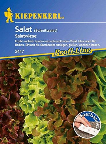 Kiepenkerl, Schnittsalat Salatwiese Saatband Baby leaf