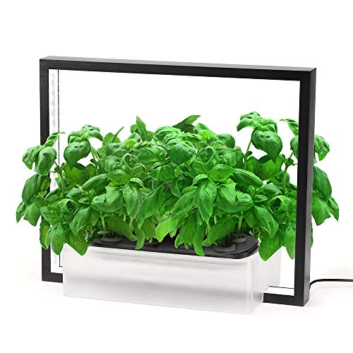 786 Vegebox V-Frame Indoor Garden
