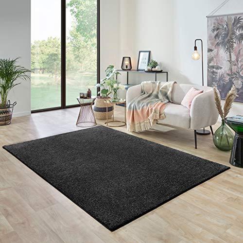Carpet Studio Ohio Alfombra Salón 115x170cm, Alfombras para Sala, Comedór & Dormitorio, Fácil de Limpiar, Superficie Suave, Pelo Corto - Gris Oscuro