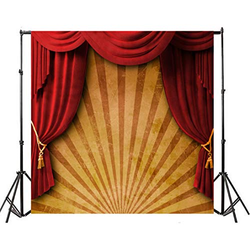 Leyiyi 8x8ft Photography Background 3D T Stage Backdrop 1st B Day Party Fun Fair Circus Tent Curtain Abstract Stripe Chinese Drama Lay Flat Kids Birthday Baby Shower Photo Portrait Vinyl Studio Prop