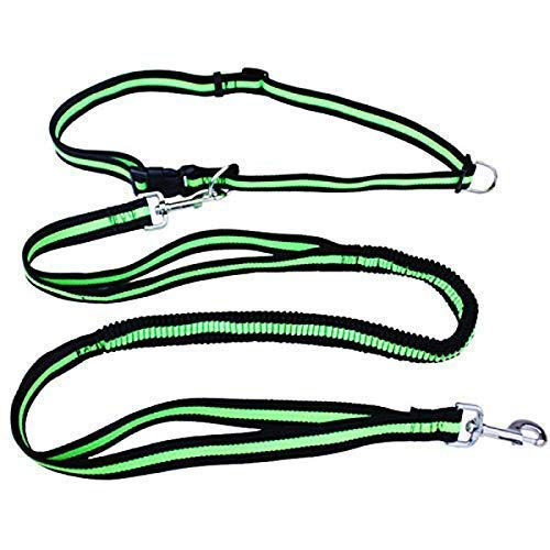 Joggen Leash Belt, hondenlijn loopband harnas Elastic Leash, verstelbare Bevestigen van taille tot Practice Jogging, professionele kabelset met Reflective Stikken LOLDF1
