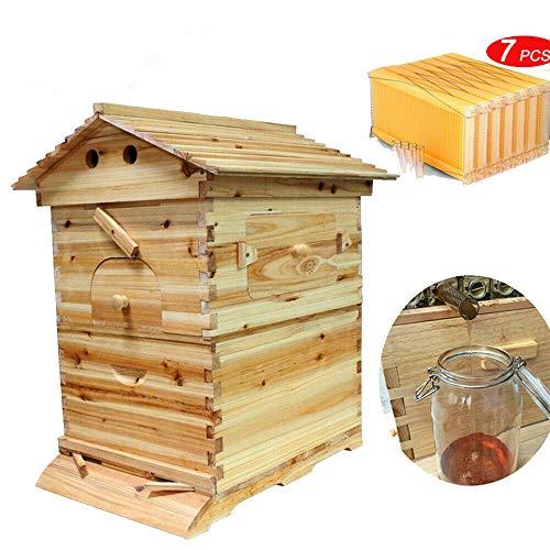 Guoyajf Holz Imkerei Bienenstock Bruthaus Box Für 7X Auto Honig Bienenstock Frames, 69X51x41cm