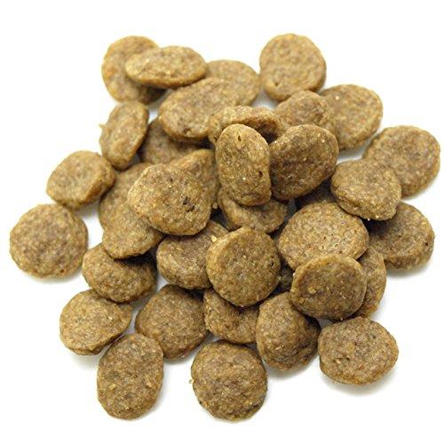 森乳サンワールドスーパーゴールド『フィッシュ&ポテト子犬・成犬用』