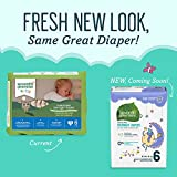 Seventh Generation Baby Free & Clear Overnight Diapers, Stage 6, 17 Count, Pack of 4