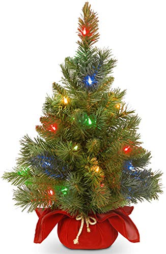 National Tree Company Pre-lit Artificial Mini Christmas Tree | Includes Multi-Color LED Lights and Cloth Bag Base | Majestic Fir - 2 ft