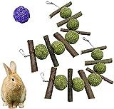 Maotrade 2 Piezas Juguetes Cobayas Bola de Hierba y Madera de Manzano Natural Juguetes Conejos Y 1 Sepak Takraw Juguetes Hamster Usado para Animales Pequeños Chinchilla Erizo Ardilla
