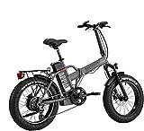LOMBARDO BICI APPIA Ruota 20 Fat Bike Motore 250w 80Nm Batteria 624Wh 48v 13ah Gamma 2020 (Titanium Black Matt)