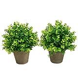 SHACOS 2er Set Künstliche Grün Gras Bonsai Kunstpflanze im Topf Künstliche Pflanzen Groß, Für Hochzeit/Büro/Zuhause Dekoration 2 Stücke