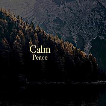 # 1 Album: Calm Peace