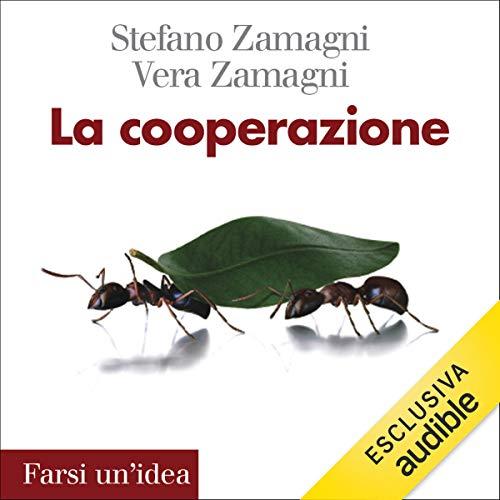 La cooperazione copertina