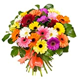 Flower Delivery Service BloomsyBox -15 Stem Multicolored Gerbera Daisy Bouquet with Mix of Pink, Red, White, Yellow, Orange Flowers for Centerpieces and Long Vase Life, Vase Not Included