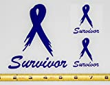 Purple Survivor Ribbon- Single Color Set of 3 HQ High Gloss Purple Vinyl Decals! Crohn's Domestic Violence Alzheimer's Lupus General Cancer Animal Cruelty Cystic Fibrosis Testicular Cancer Drug Overdose Pancreatic Cancer