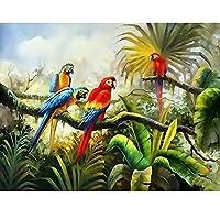 数字で描くキット動物鳥大人のための数字で描くアクリル絵の具DIYギフト手作りの壁工芸品の写真(フレームレス)40x50cm