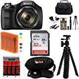 Sony DSC-H300/B DSCH300B H300 20.1MP with 35x Optical Zoom and 3-inch LCD + Sony 32GB SDHC + Focus AA Batteries w/Charger + Focus Camera Case with Accessory Kit