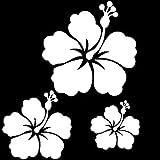 kdosublim Stickers Autocollants 3 Fleur d'hibiscus Couleur aux Choix,Voiture,frigo,Mur,Porte etc. (Blanc)