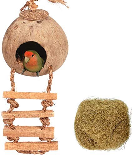 Coconut Hanging Bird Nest House Cage Toys | Natural Hideaway Bird Huts and Toys, Entertain and Safe for All Kinds of Birds (Coconut Nest with Ladder and Bed Mat)