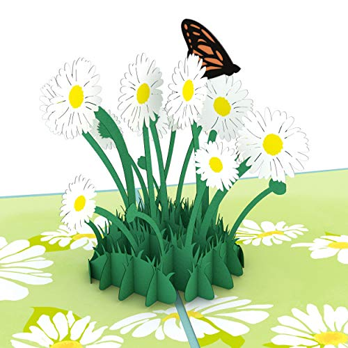 Lovepop Daisy Patch Pop Up Card - 3D Card, Easter Pop Up Card,Mother's Day Card, Spring Card, Card for Mom, Mom Card, Greeting Card, Card for Wife, Flower Card, Appreciation Card