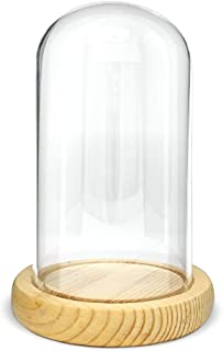 6 Inch Glass Dome Display Cloche - Protective Bell Jar Decorative Glass Cover with Natural Wooden Base