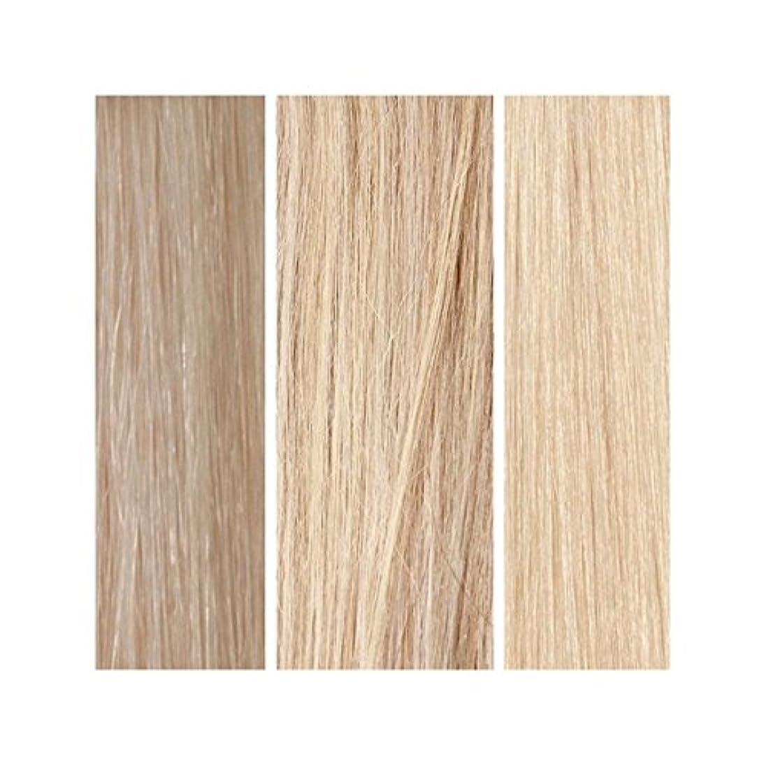暴君入浴回想ライトブロンドバンドル - 美しさは、100%レミーの色見本を働きます x4 - Beauty Works 100% Remy Colour Swatch - Light Blonde Bundle (Pack of 4) [並行輸入品]