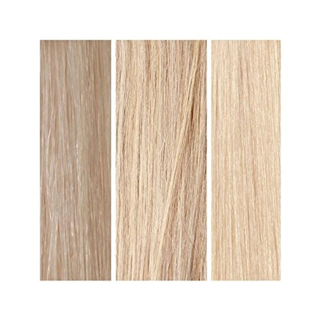 対称決定的つかまえるライトブロンドバンドル - 美しさは、100%レミーの色見本を働きます x2 - Beauty Works 100% Remy Colour Swatch - Light Blonde Bundle (Pack of 2) [並行輸入品]