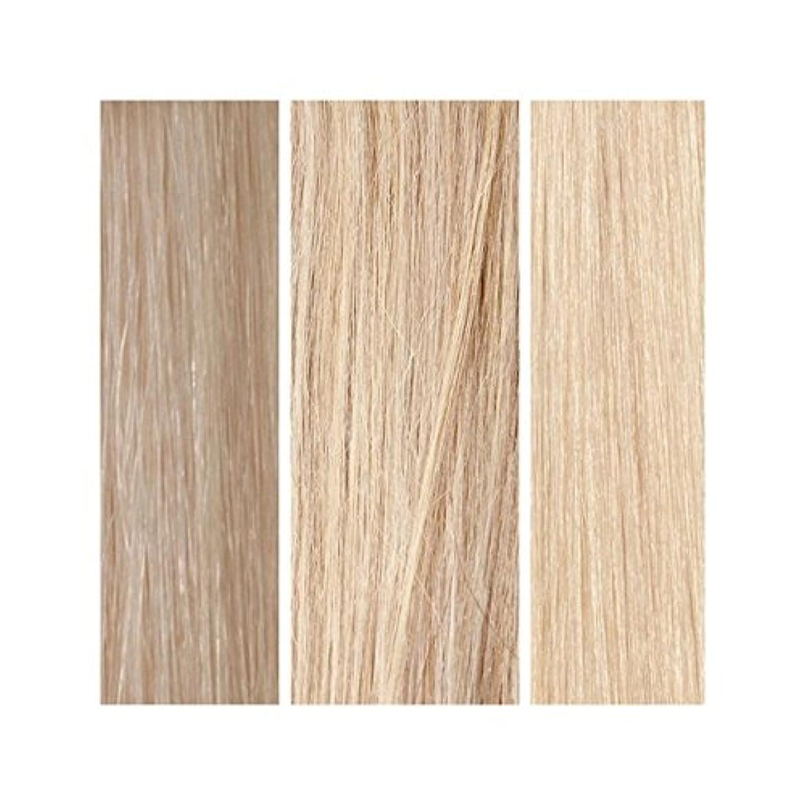 危機冒険者差Beauty Works 100% Remy Colour Swatch - Light Blonde Bundle (Pack of 6) - ライトブロンドバンドル - 美しさは、100%レミーの色見本を働きます x6 [並行輸入品]