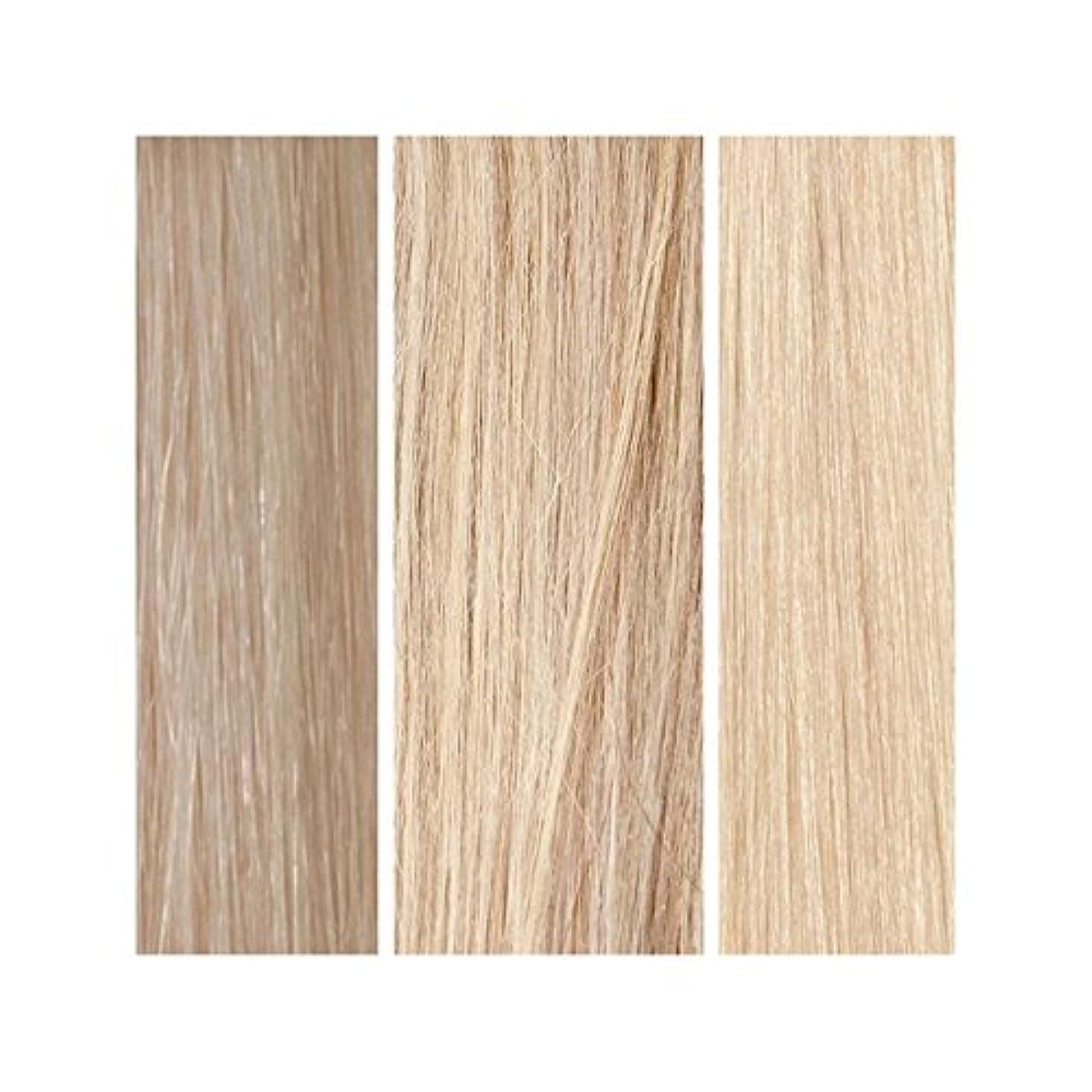 ページェント合金有益なライトブロンドバンドル - 美しさは、100%レミーの色見本を働きます x2 - Beauty Works 100% Remy Colour Swatch - Light Blonde Bundle (Pack of 2) [並行輸入品]