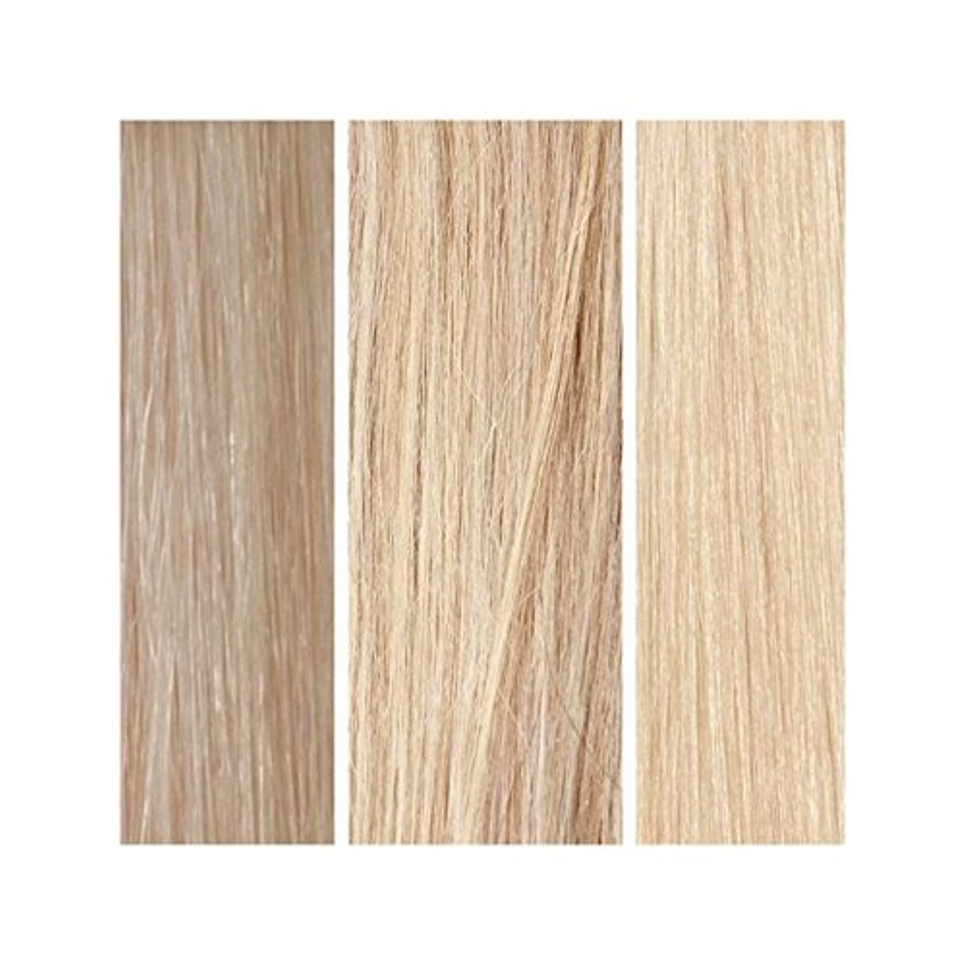あらゆる種類の対応実り多いBeauty Works 100% Remy Colour Swatch - Light Blonde Bundle - ライトブロンドバンドル - 美しさは、100%レミーの色見本を働きます [並行輸入品]