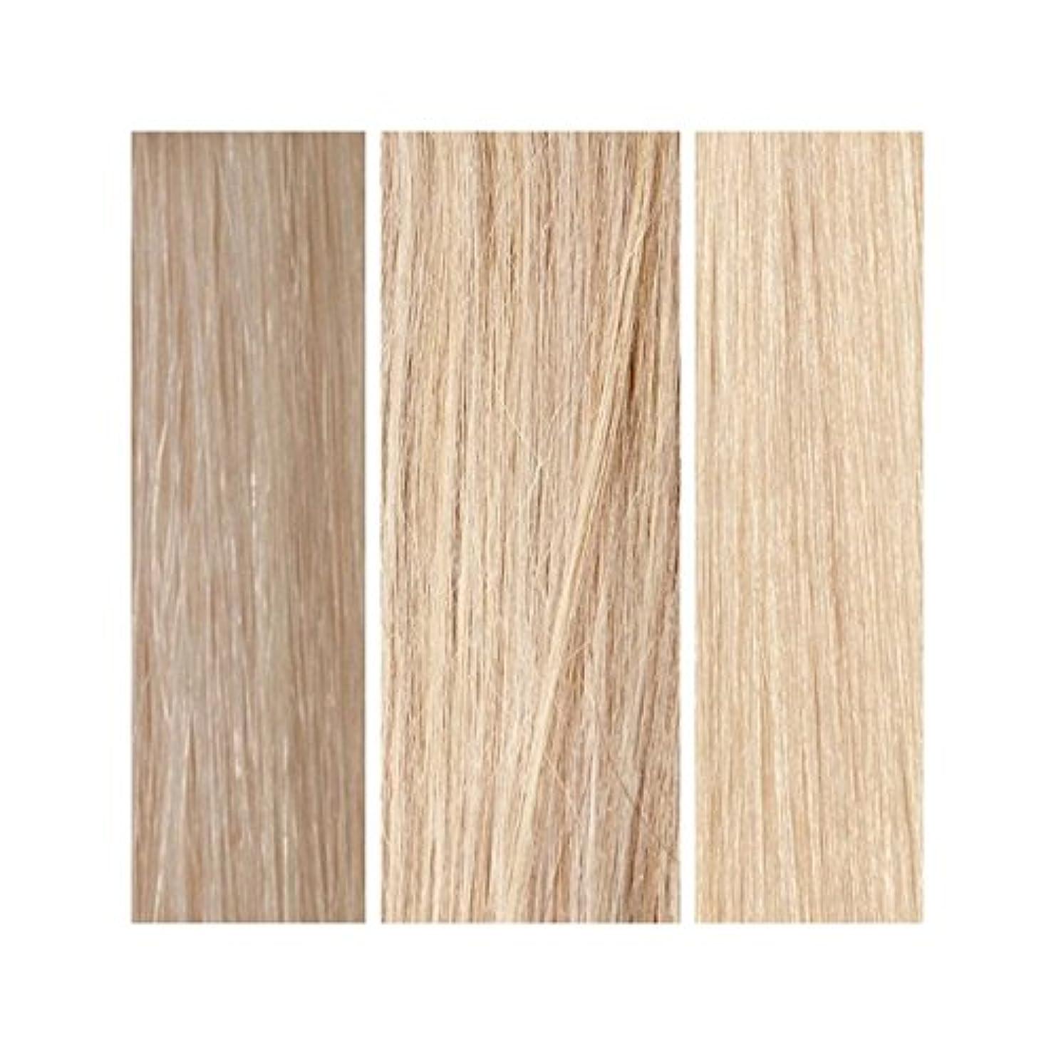 甲虫エアコンドールBeauty Works 100% Remy Colour Swatch - Light Blonde Bundle - ライトブロンドバンドル - 美しさは、100%レミーの色見本を働きます [並行輸入品]