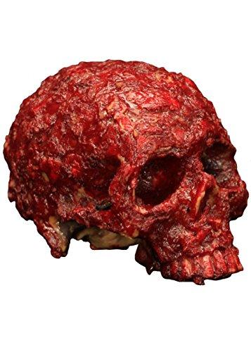 Creative Collection Co. Crâne de résine Halloween Prop sanglante Contre la tavelure