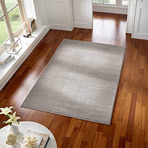 Taracarpet Teppich Kurzflor modern für Wohnzimmer Schlafzimmer und das Kinderzimmer super weich und Öko Tex Zertifiziert grau 060x090 cm