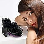 Beauty Shopping Detangler Hair Brush Detangling Hairbrush – Black (2 Packs)