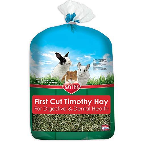 Kaytee Timothy Hay 1St Cut for Digestive & Dental Health Benefits, 6.5 lb, Green