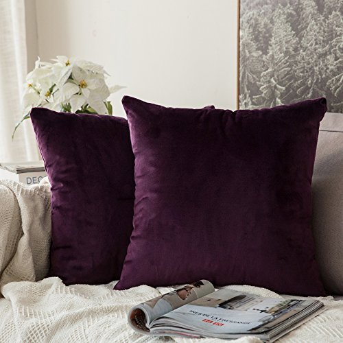 MIULEE Pack of 2 Velvet Soft Decorative Square Throw Pillow Case Cushion Covers Luxury Pillowcases for Livingroom Sofa Bedroom with Invisible Zipper 50cm x 50cm,20x20 Inches Aubergine