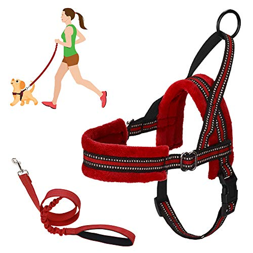 SlowTon No Pull Small Dog Harness and Leash, Heavy Duty Easy For Walk Vest Harness Soft Padded Reflective Adjustable Puppy Harness Anti-Twist 4FT Pet Lead Quick Fit for Small Dog Cat Animal (xxs, Red)