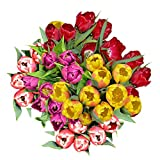 GlobalRose 60 Assorted Tulip Flowers - Fresh Flowers Wholesale Express Delivery