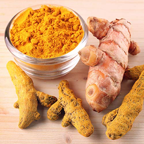 Spacetouch Dried Turmeric Roots Ayurvedic Turmeric Roots Haldi Roots Herbal Turmeric Roots 300 Gram
