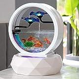 YXYXN Aquarium Créatif Écologique Aquarium, Fontaine Créativité Dessus De Table Petit Aquarium...