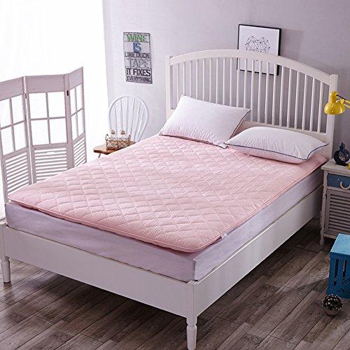 JIARUN Brushed Fabric Tatami Floor Mattress Mat, Ergonomics Sleeping Pad Breathable Mattress Mat Topper Cushion Quilt Japanese For Students Dorm Home-b 80x190cm(31x75inch)