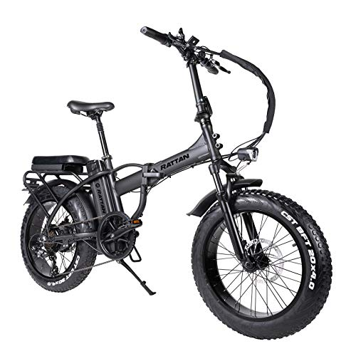 Rattan 20 Inch 750W Power Folding Electric Bikes for Adults, 48V/13AH Removable Lithium Battery with 7 Speed Brushless Motor Ebikes Foldaway Sport Commuter Snow Off-Road Dirt E-Bikes (LM-750 Black)