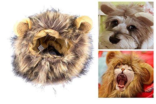 itplus Cute Gato/Kitty/Pet cosplay costume Lion Mane peluca sombrero para gato o perro pequeño cachorro Dress Up con orejas Halloween Festival