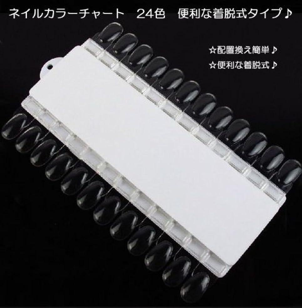 リズム落胆するポケット【新入荷!】ネイルカラーチャート 24色 便利な着脱式タイプ?