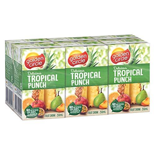 Golden Circle Tropical Punch Fruit Drink, 6 x 250ml (8451612908-AJ / P6306/G)