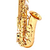 Saxophone Lacquer Sax with Student Alto Saxophone E Flat Gold Carrying Case Mouthpiece Straps Lubricant etc Portable Handheld (Color : Gold, Size : 66x29x12.5cm)