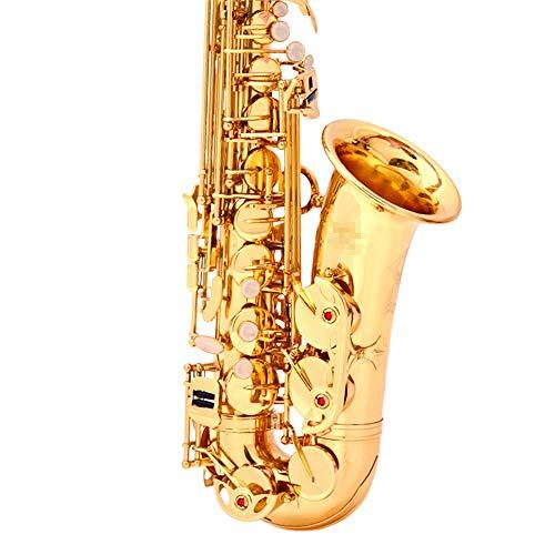 JenLn Student Altsaxophon E Flachgoldlack Sax Mit Tragetasche Mundstück Straps Schmiermittel usw. (Color : Gold, Size : 66x29x12.5cm)