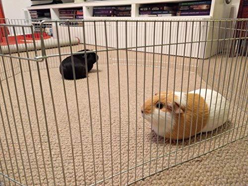 Klein Haustier Käfig 25h X 48w X 6 Elemente, Schwein Hamster, Mäuse, Kleintiere, Rennmaus, Freilaufgehege für Kleintiere, verzinkt