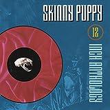 Songtexte von Skinny Puppy - 12 Inch Anthology