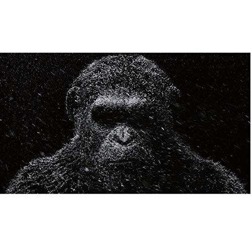 agwKE2 Caesar Planet of The Apes Poster Painting Gorilla Animal Posters and Prints Wall Art Pictures For Living Room 60x90cmx1 sin Marco