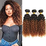 Adette 100% Brazilian Human Hair 1b/30 Bundles 12 14 16 Ombre Curly Bundles Two Tone Black to Brown Bundles Unprocessed Remy Hair Extensions for Beautiful Women